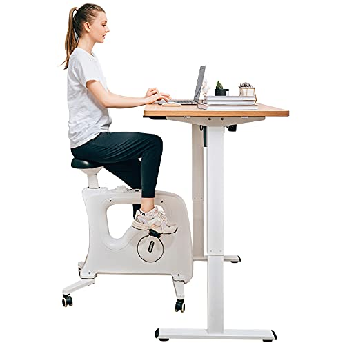 FlexiSpot Under Desk Bike Home Office Exercise...