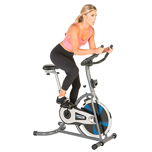 ProGear 100S Exercise Bike/Indoor Training Cycle...