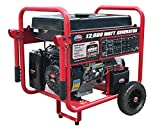 All Power America APGG12000 12000 Watt Portable...
