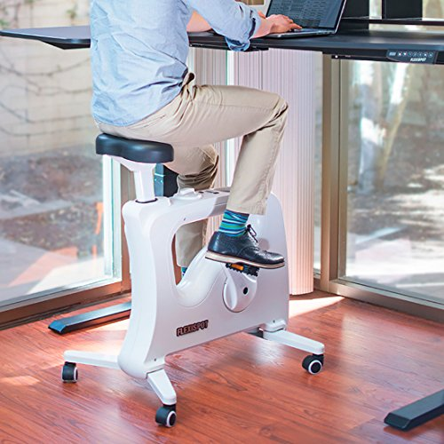 FLEXISPOT Home Office Under Desk...