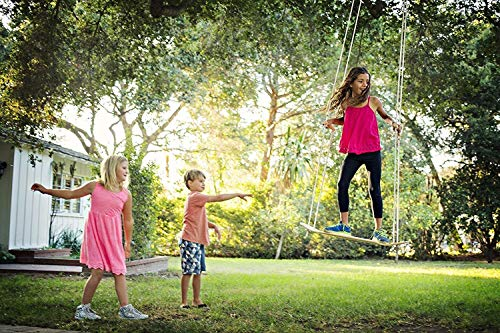 Sk8Swing Skateboard Swing Perfect Replacement for...