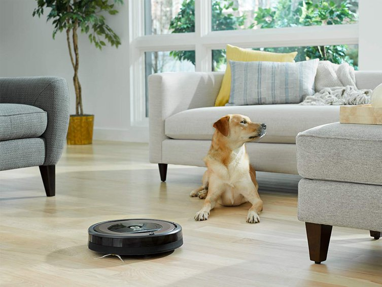 roomba 890 with dog